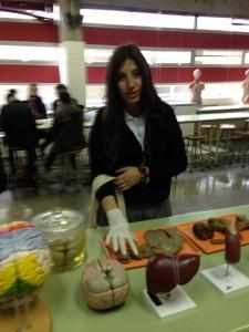 ColegioDonbosco_rancagua_171013_8