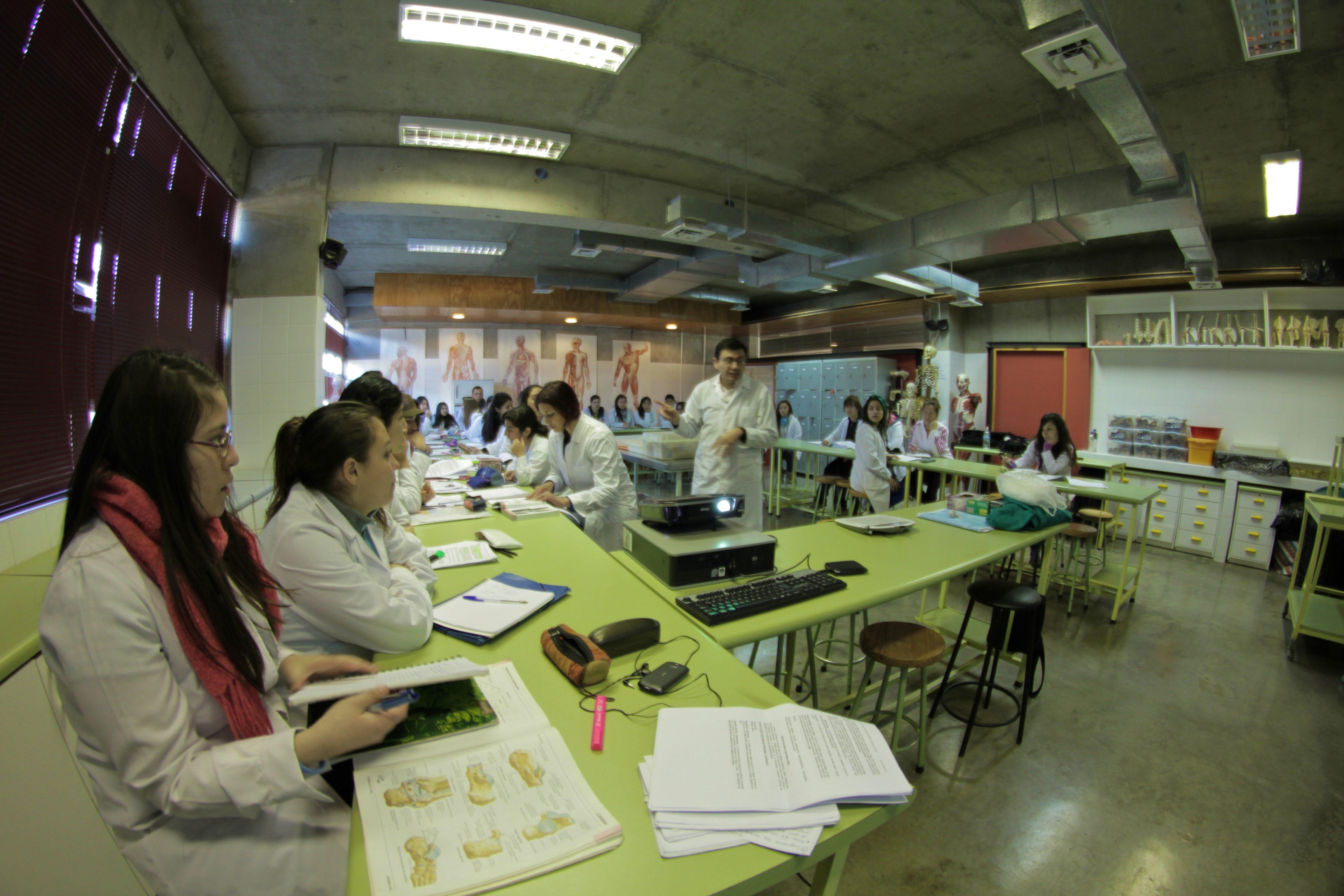 Pedagogía en Biología y Ciencias celebra sus 50 años con más de mil egresados