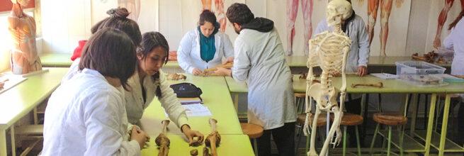 Pedagogía en Biología y Ciencias UPLA