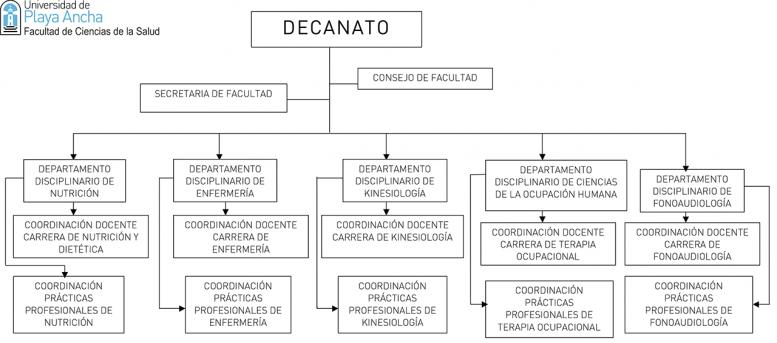 Universidad de Playa Ancha - Facultad de Ciencias de la Salud - Estructura de gobierno