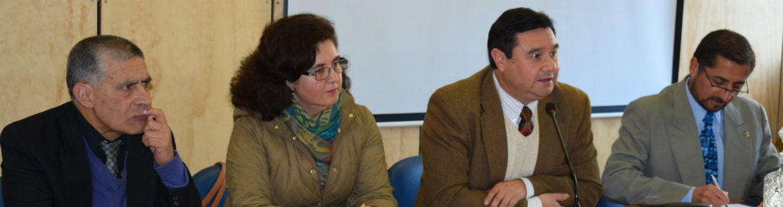 Nueva guía para la enseñanza del hándbol escolar propone académico UPLA