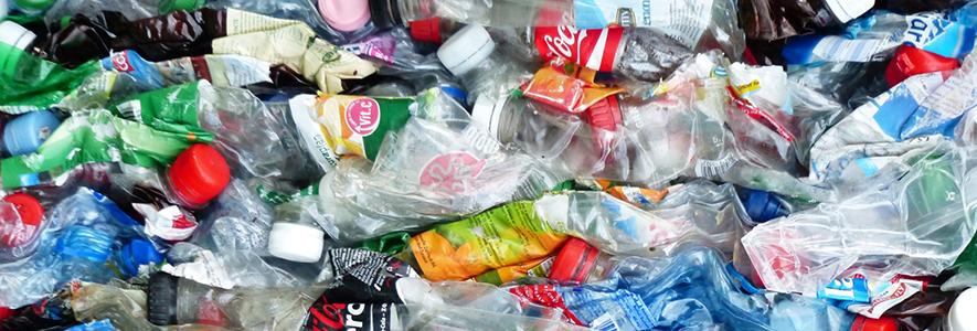 Directora de Medio Ambiente UPLA frente a Pacto Global de los Plásticos