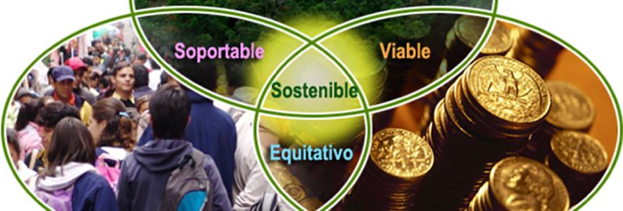 Rol e importancia de las empresas de asesoría en gestión ambiental