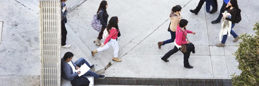 Universidad de Playa Ancha: Centro de Recursos de Apoyo a la Diversidad - Biblioteca: patio