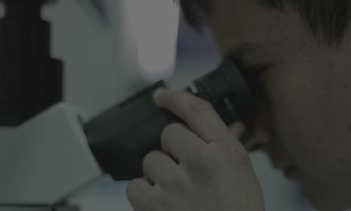 UPLA participa en feria científica y tecnológica de Catemu