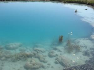 ecologia_microbiana_cuatrocienegas1