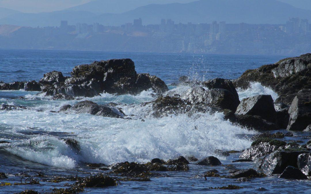 Proyecto Océano: UPLA contribuirá con mapeo genético de recursos acuáticos